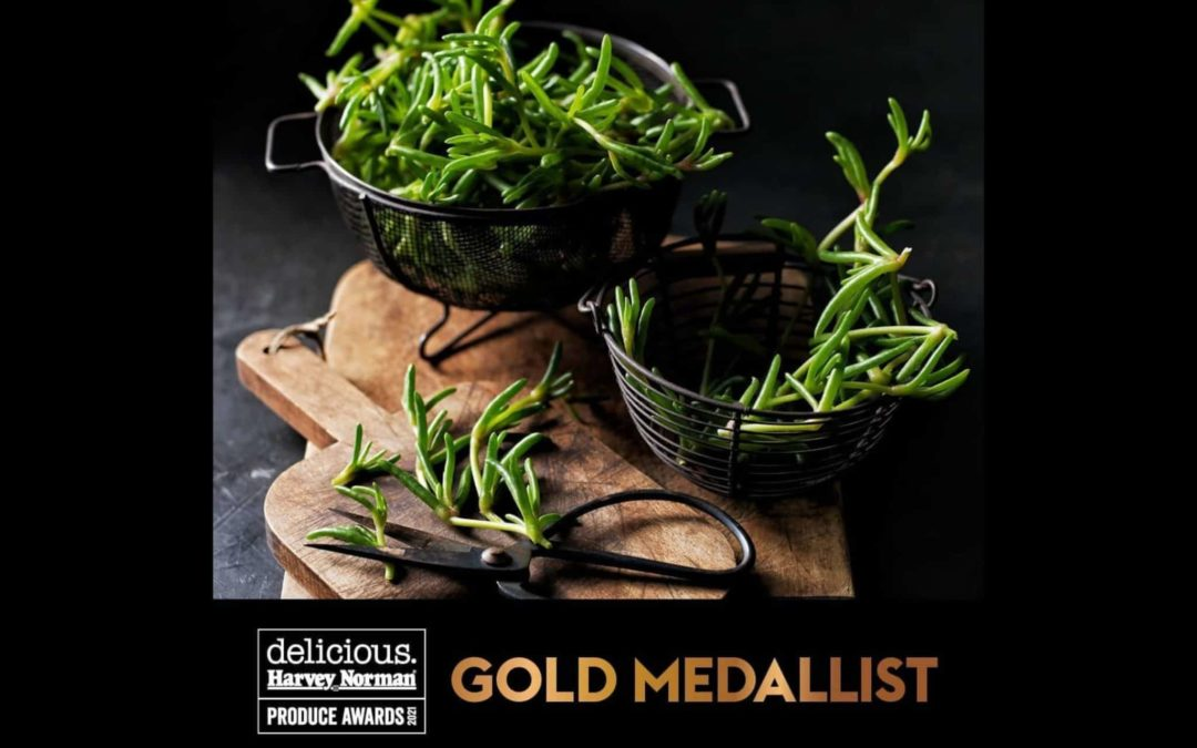 State Winner and Gold Medallist in this year's delicious. Produce Awards!